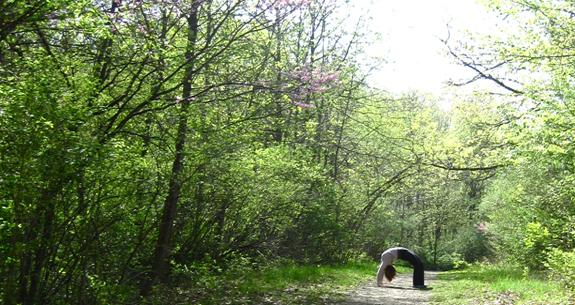springyogachallenge for twist yoga